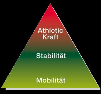 MSA Fitness und Gesundheits Konzept Werl